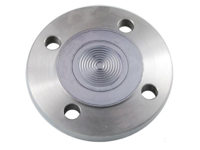 F2 diaphragm seal with flange connection